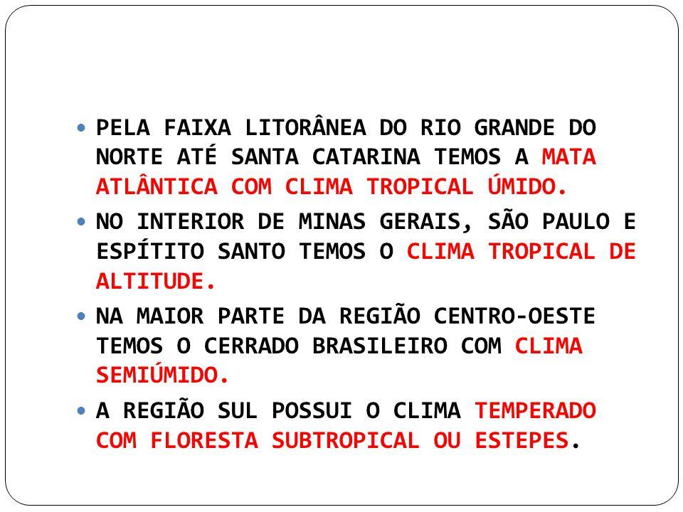PELA FAIXA LITORÂNEA DO RIO GRANDE DO NORTE ATÉ SANTA CATARINA TEMOS A MATA ATLÂNTICA COM CLIMA TROPICAL ÚMIDO. NO INTERIOR DE MINAS GERAIS, SÃO PAULO