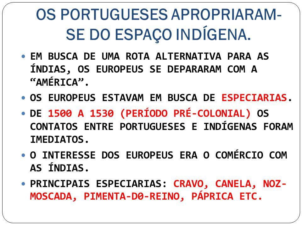 OS PORTUGUESES APROPRIARAM- SE DO ESPAÇO INDÍGENA. EM BUSCA DE UMA ROTA ALTERNATIVA PARA AS ÍNDIAS, OS EUROPEUS SE DEPARARAM COM A AMÉRICA. OS EUROPEU