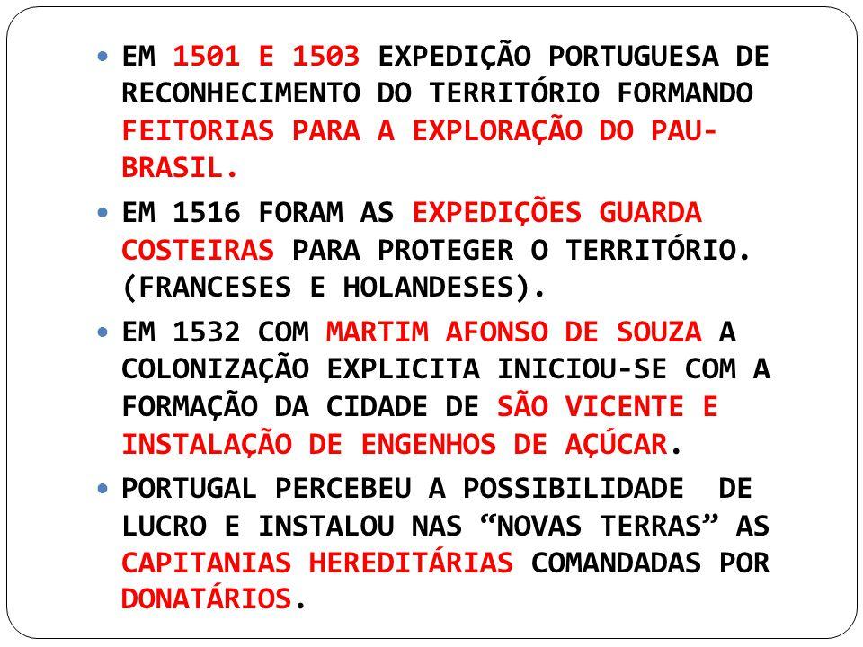 EM 1501 E 1503 EXPEDIÇÃO PORTUGUESA DE RECONHECIMENTO DO TERRITÓRIO FORMANDO FEITORIAS PARA A EXPLORAÇÃO DO PAU- BRASIL. EM 1516 FORAM AS EXPEDIÇÕES G