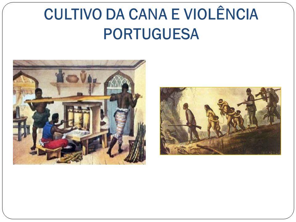 O PROCESSO DE FORMAÇÃO DO TERRITÓRIO BRASILEIRO INICIALMENTE A OCUPAÇÃO DO TERRITÓRIO BRASILEIRO RESTRINGIU-SE AO LITORAL COM PLANTAÇÃOES DE CANA-DE- AÇÚCAR.