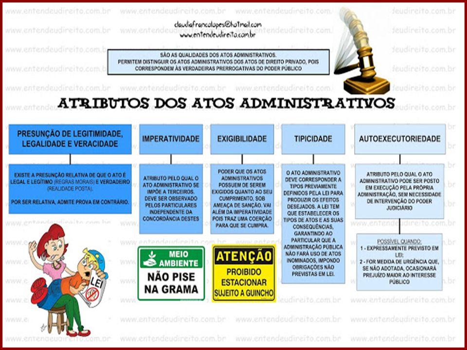 33 DIREITO ADMINISTRATIVO PROFESSORA AMANDA