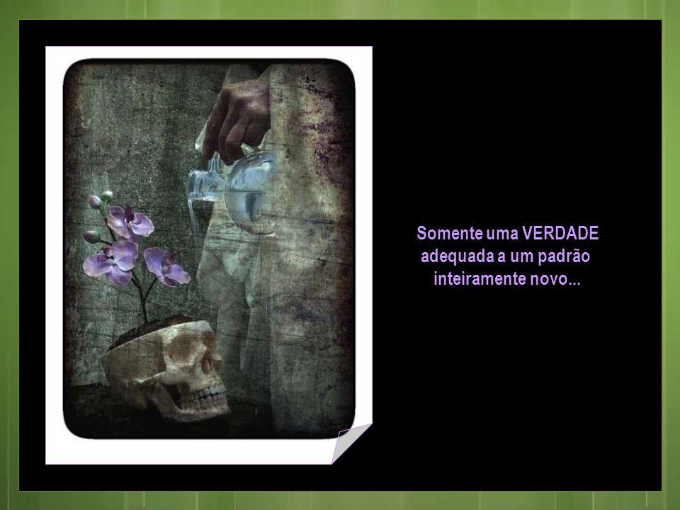 Parceria de texto elza.kalybatas@terra.com.br rose.acaciana@gmail.com Som – Mozart Imagens internet