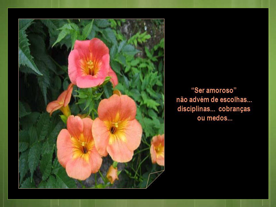 Ser amoroso não advém de escolhas... disciplinas... cobranças ou medos...