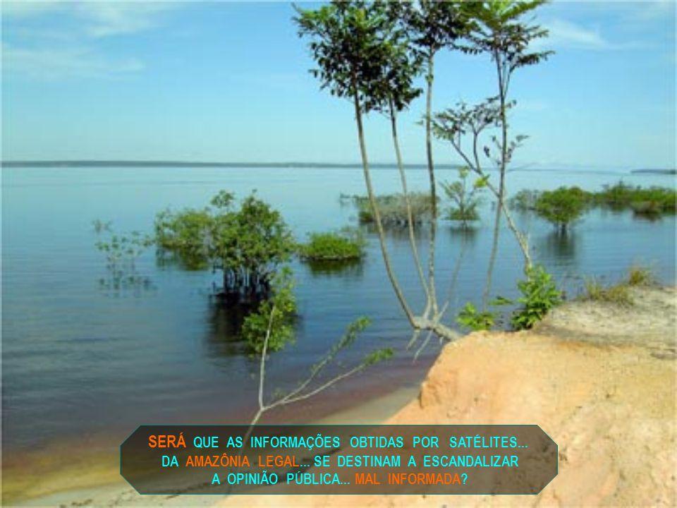 SERÁ QUE A AMAZÔNIA LEGAL...NÃO É O CENTRO DA CONFUSÃO CRIADA...