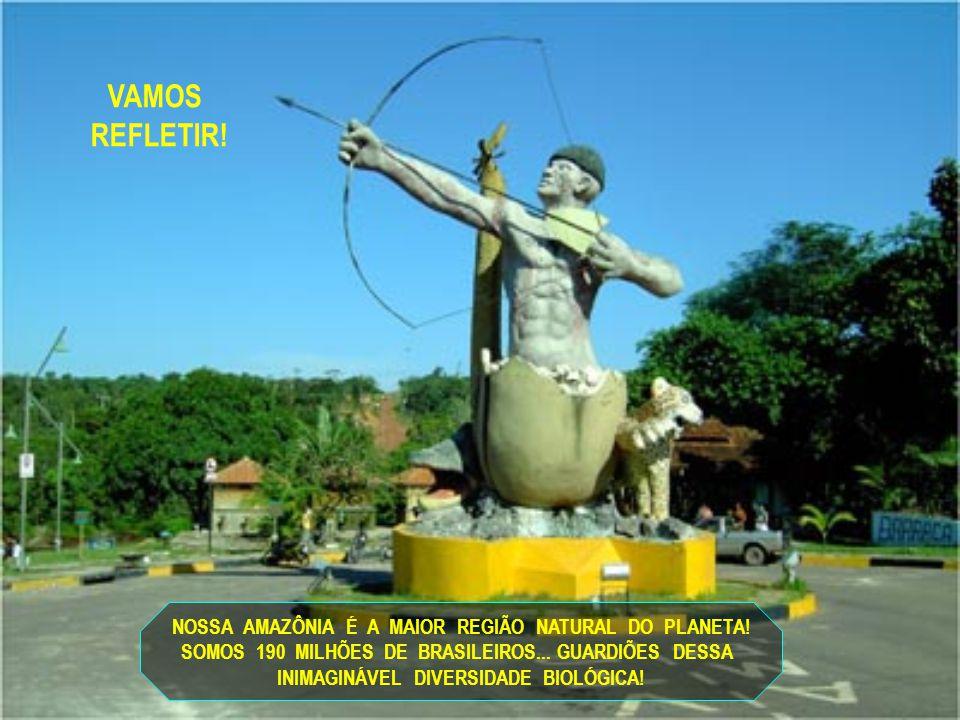 NOSSA AMAZÔNIA É A MAIOR REGIÃO NATURAL DO PLANETA.