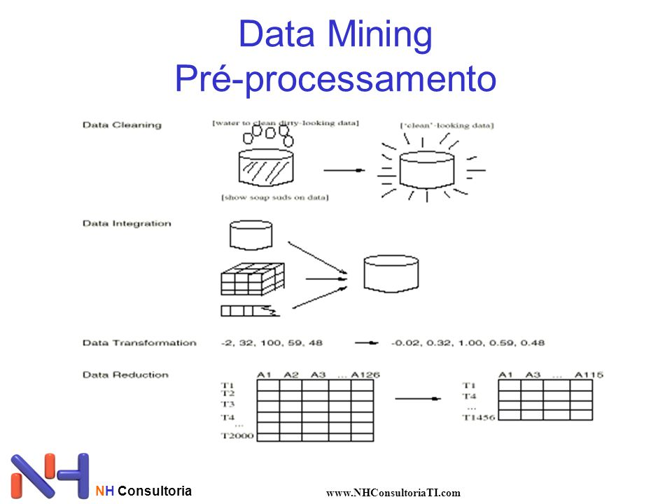 NH Consultoria www.NHConsultoriaTI.com Data Mining Pré-processamento