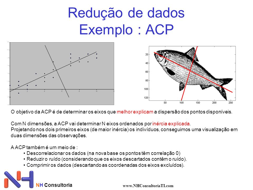 NH Consultoria www.NHConsultoriaTI.com Redução de dados Exemplo : ACP O objetivo da ACP é de determinar os eixos que melhor explicam a dispersão dos p