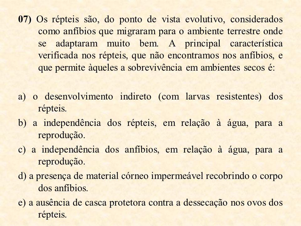 07) Os répteis são, do ponto de vista evolutivo, considerados como anfíbios que migraram para o ambiente terrestre onde se adaptaram muito bem. A prin