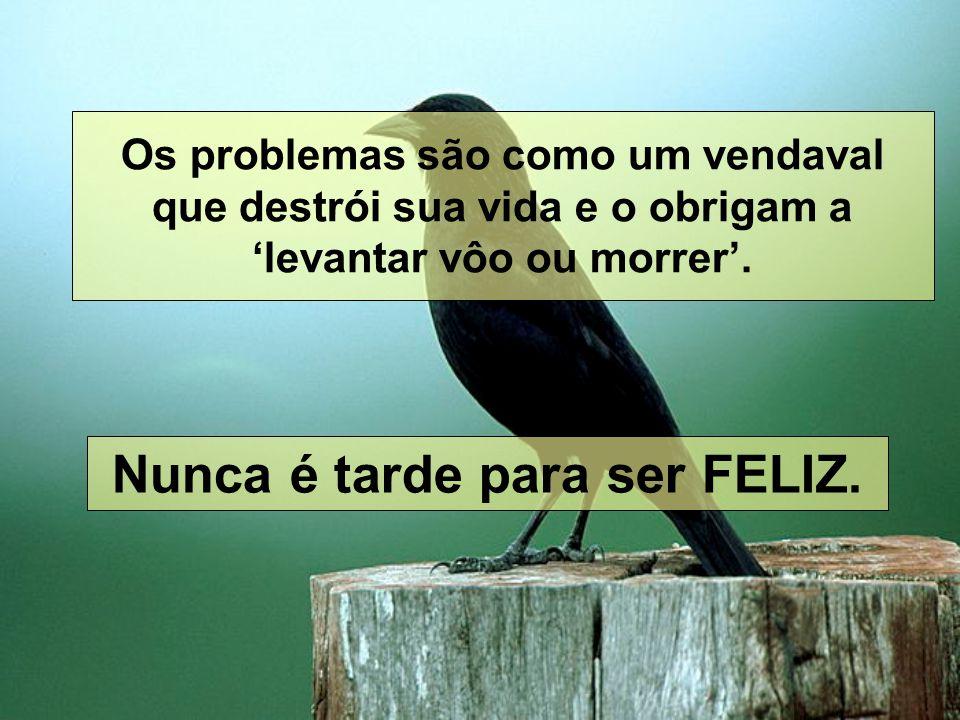 Os problemas são como um vendaval que destrói sua vida e o obrigam a levantar vôo ou morrer.
