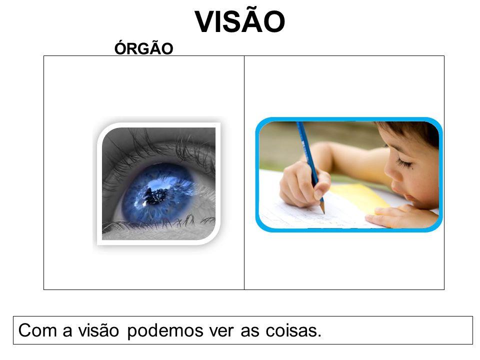 VISÃO ÓRGÃO Com a visão podemos ver as coisas.