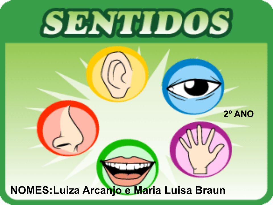 2º ANO NOMES:Luiza Arcanjo e Maria Luisa Braun