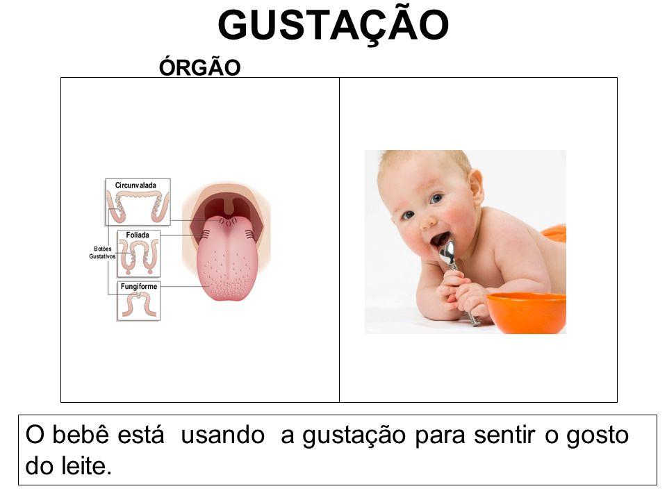 GUSTAÇÃO ÓRGÃO O bebê está usando a gustação para sentir o gosto do leite.