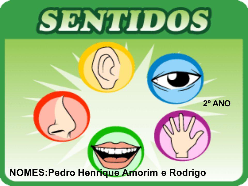 2º ANO NOMES:Pedro Henrique Amorim e Rodrigo