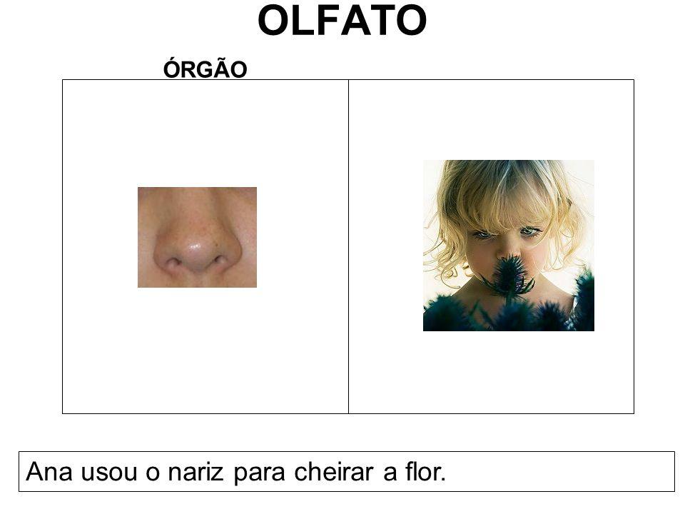 OLFATO ÓRGÃO Ana usou o nariz para cheirar a flor.