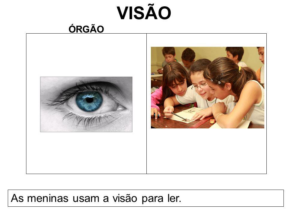 VISÃO ÓRGÃO As meninas usam a visão para ler.