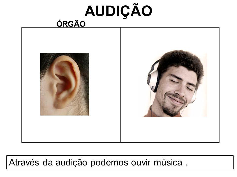 AUDIÇÃO ÓRGÃO Através da audição podemos ouvir música.