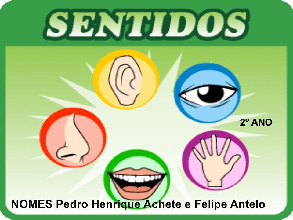 2º ANO NOMES Pedro Henrique Achete e Felipe Antelo