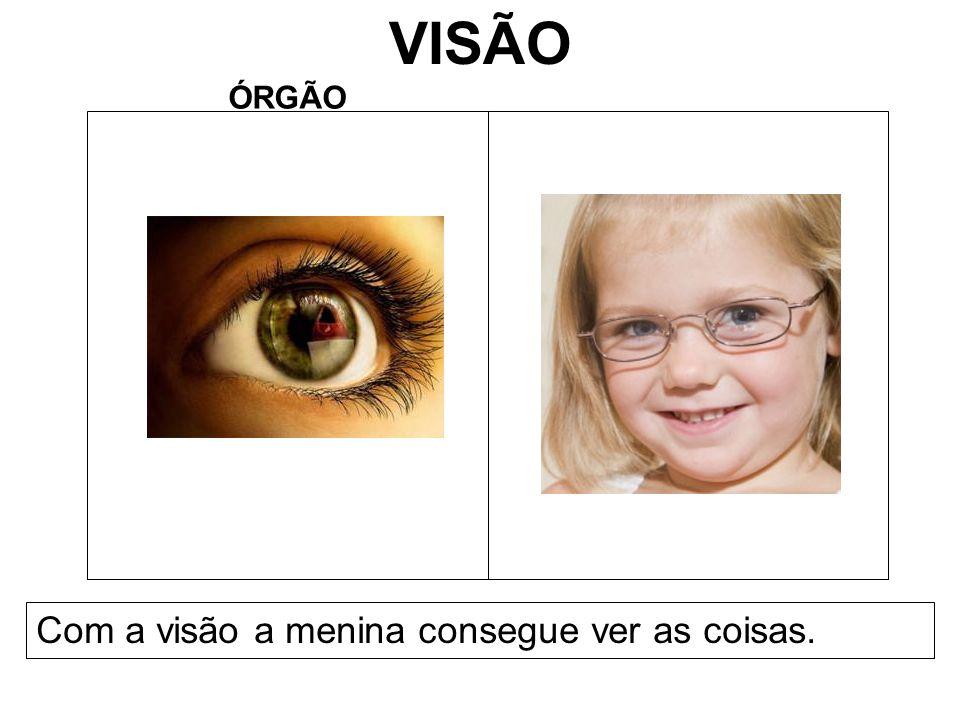VISÃO ÓRGÃO Com a visão a menina consegue ver as coisas.