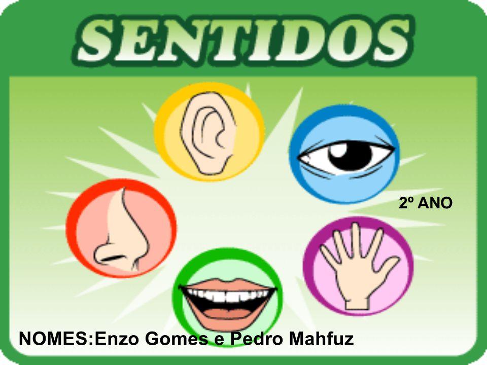2º ANO NOMES:Enzo Gomes e Pedro Mahfuz