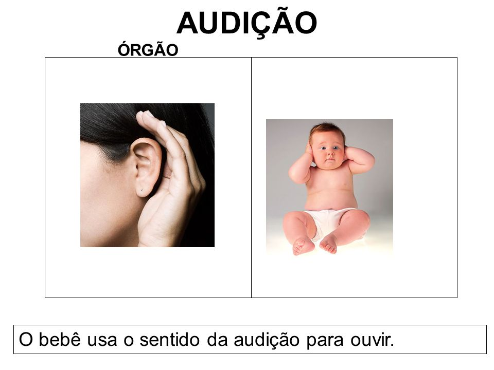 AUDIÇÃO ÓRGÃO O bebê usa o sentido da audição para ouvir.
