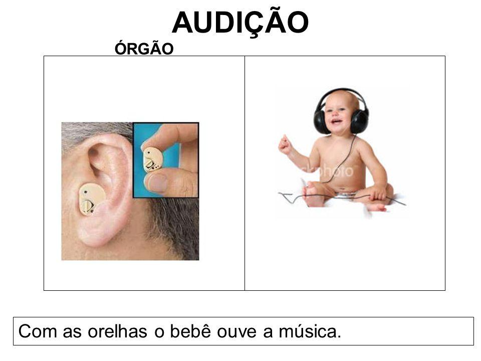 AUDIÇÃO ÓRGÃO Com as orelhas o bebê ouve a música.