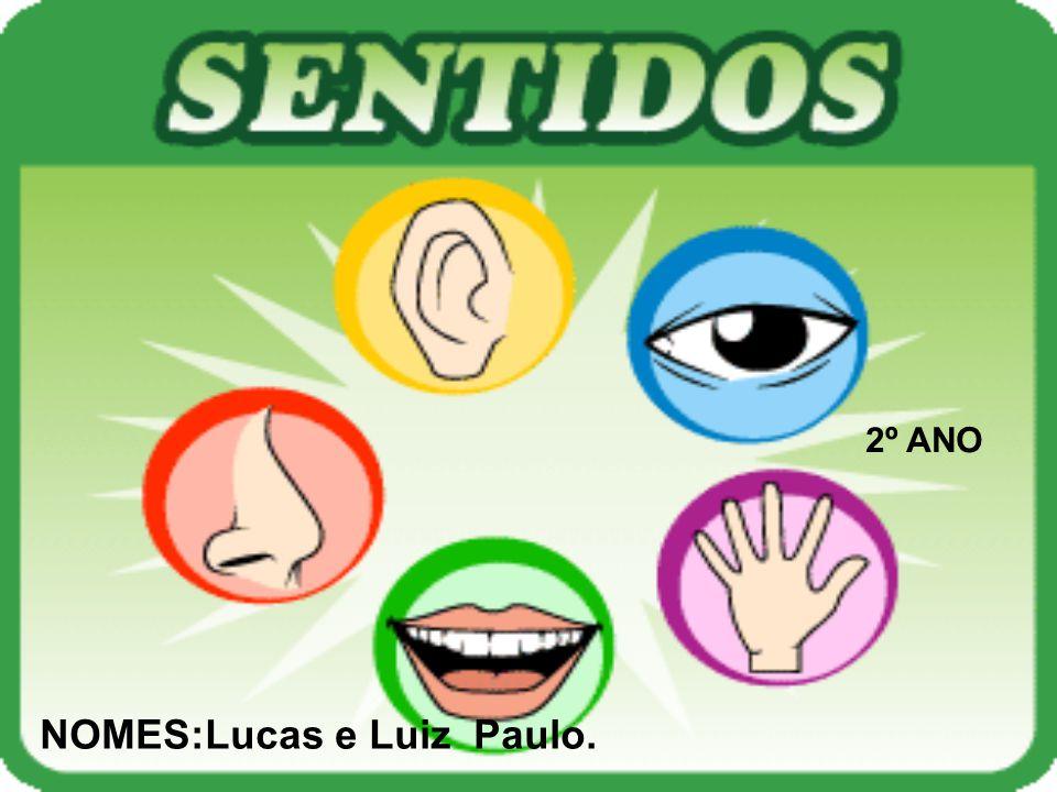 2º ANO NOMES:Lucas e Luiz Paulo.
