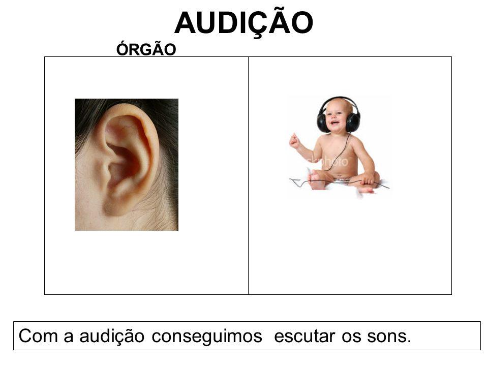 AUDIÇÃO ÓRGÃO Com a audição conseguimos escutar os sons.
