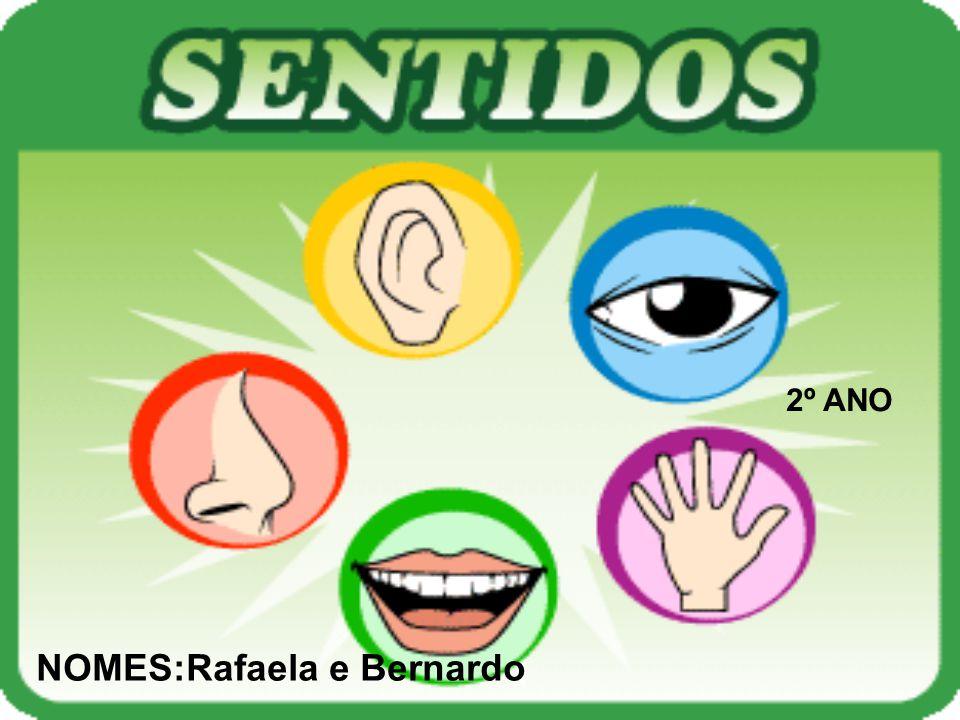 2º ANO NOMES:Rafaela e Bernardo