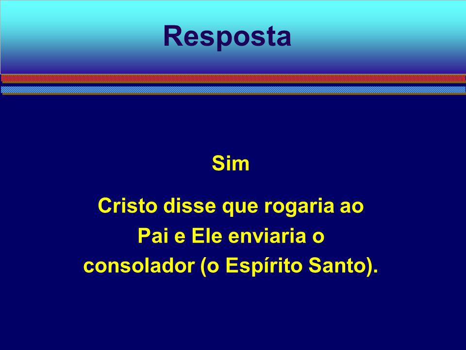 Sim Cristo disse que rogaria ao Pai e Ele enviaria o consolador (o Espírito Santo). Resposta