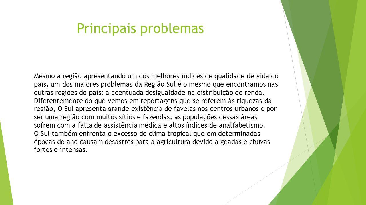 Principais problemas Mesmo a região apresentando um dos melhores índices de qualidade de vida do país, um dos maiores problemas da Região Sul é o mesm