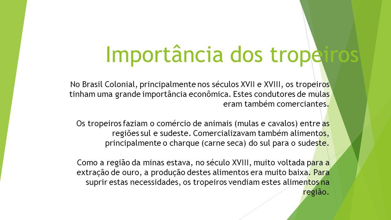 Importância dos tropeiros No Brasil Colonial, principalmente nos séculos XVII e XVIII, os tropeiros tinham uma grande importância econômica. Estes con
