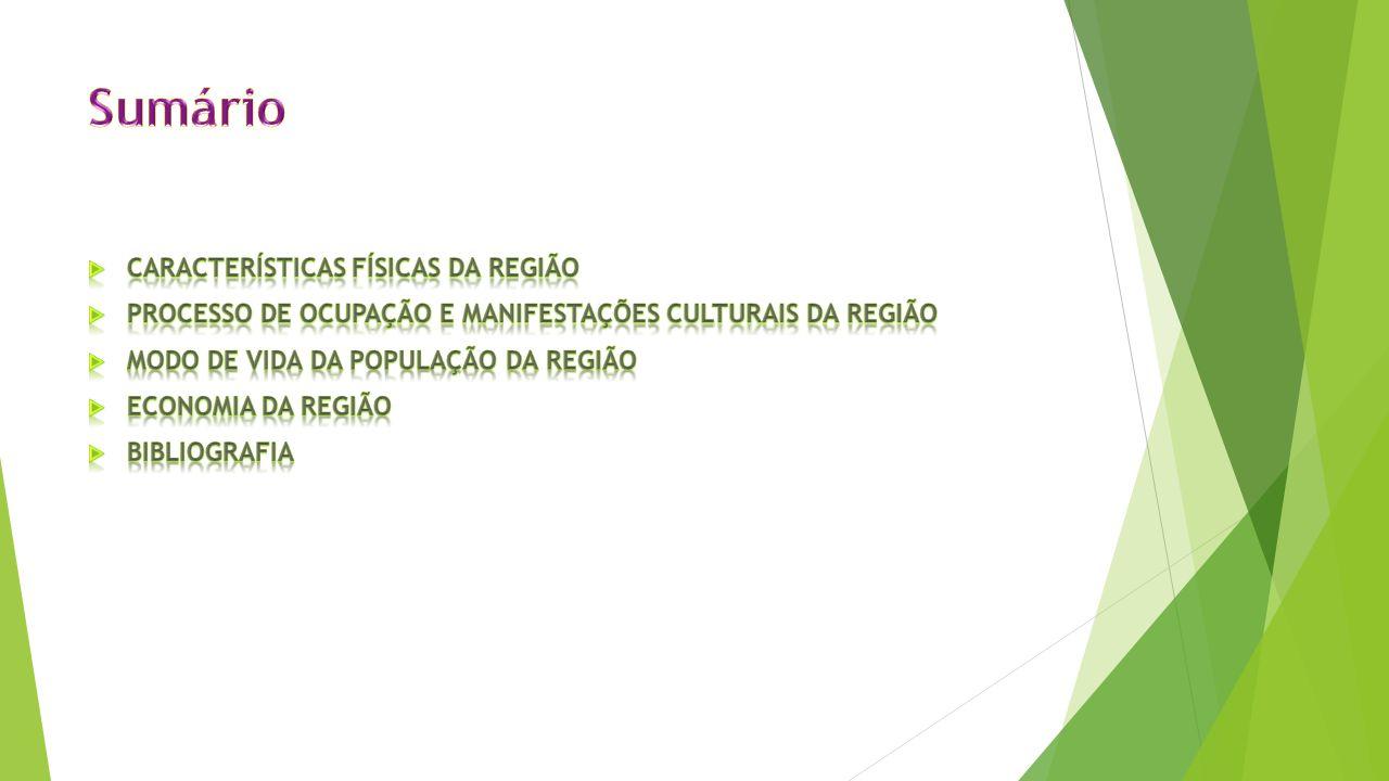Características da Região Sul do Brasil.