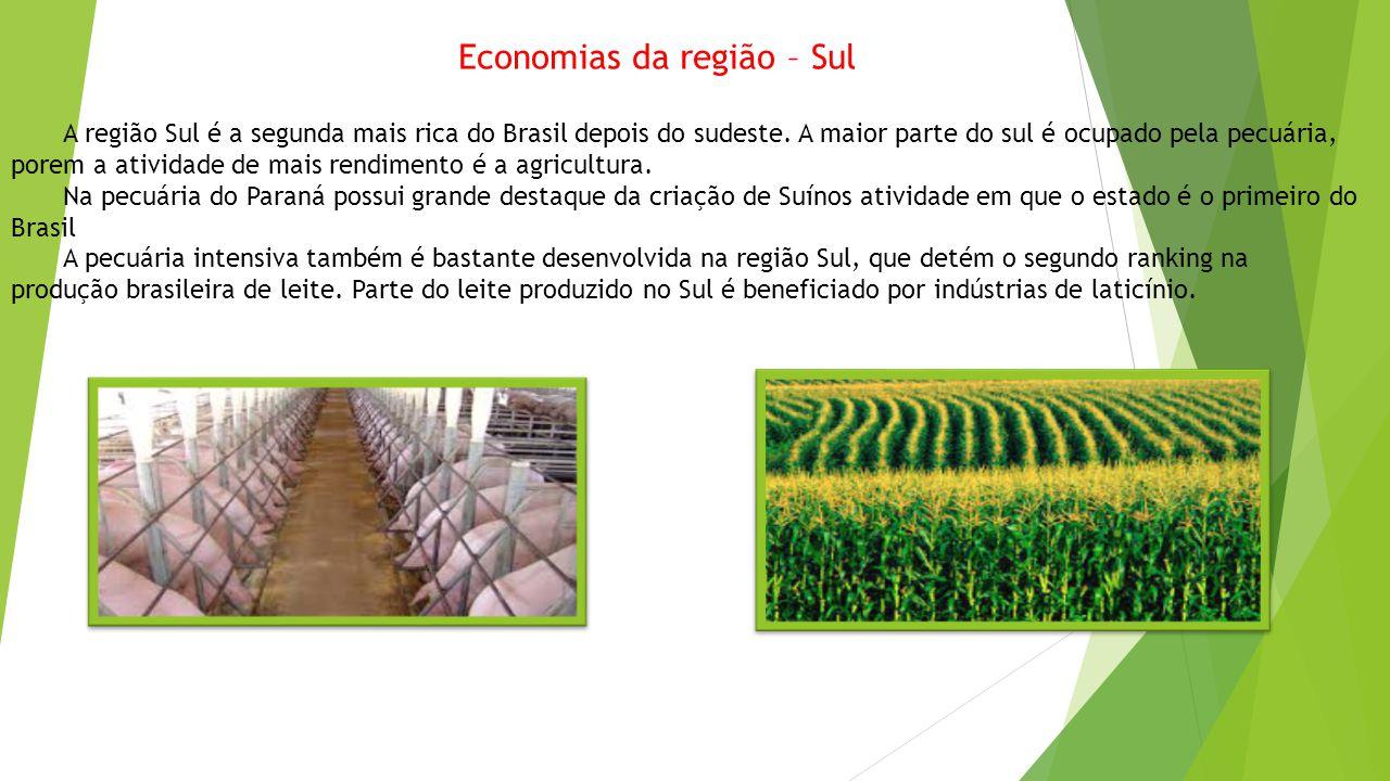 Economias da região – Sul A região Sul é a segunda mais rica do Brasil depois do sudeste. A maior parte do sul é ocupado pela pecuária, porem a ativid