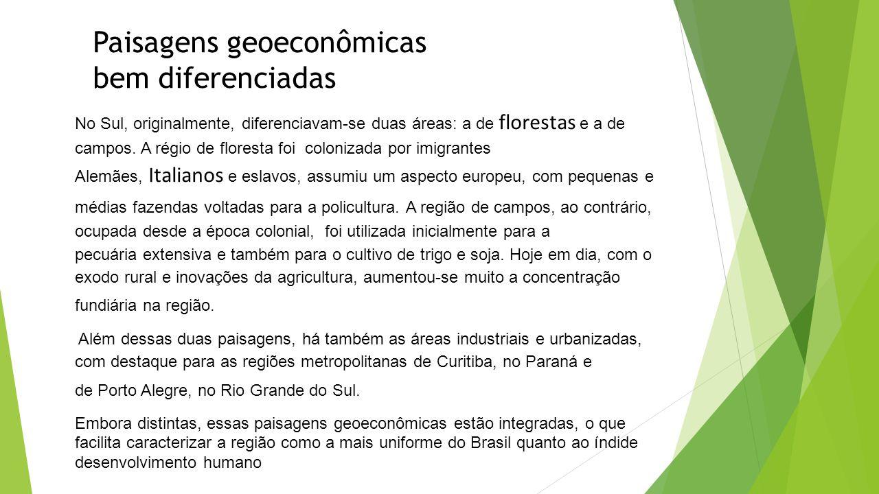 Paisagens geoeconômicas bem diferenciadas No Sul, originalmente, diferenciavam-se duas áreas: a de florestas e a de campos. A régio de floresta foi co