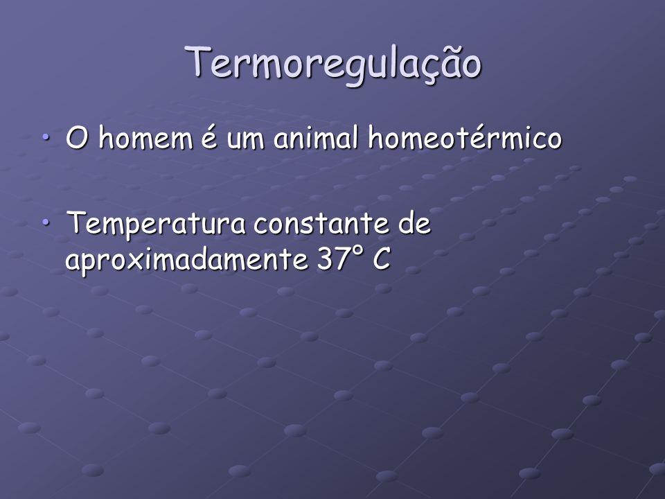 Termoregulação O homem é um animal homeotérmicoO homem é um animal homeotérmico Temperatura constante de aproximadamente 37° CTemperatura constante de