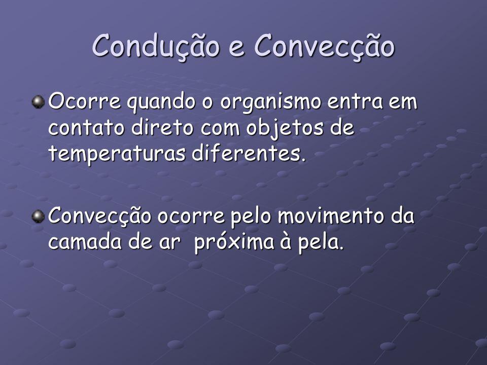 Condução e Convecção Ocorre quando o organismo entra em contato direto com objetos de temperaturas diferentes. Convecção ocorre pelo movimento da cama