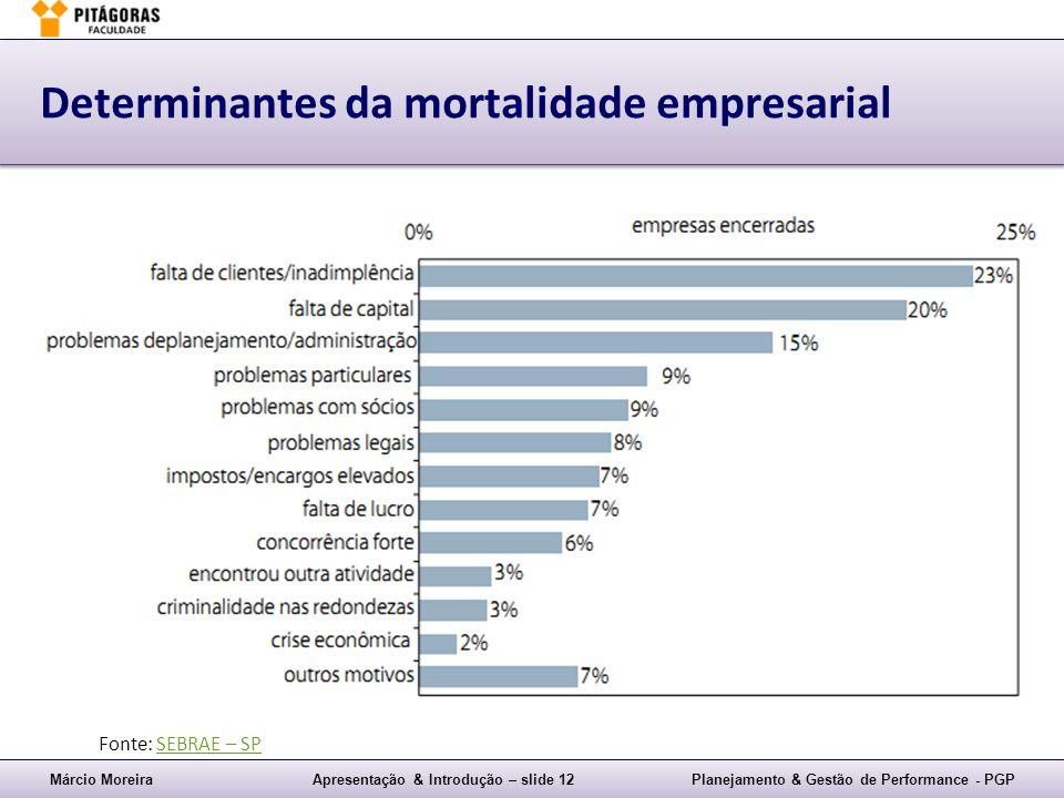 Márcio MoreiraApresentação & Introdução – slide 12Planejamento & Gestão de Performance - PGP Determinantes da mortalidade empresarial Fonte: SEBRAE –