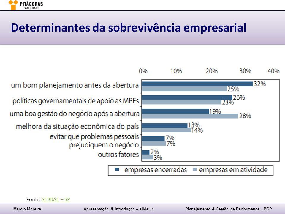 Márcio MoreiraApresentação & Introdução – slide 14Planejamento & Gestão de Performance - PGP Determinantes da sobrevivência empresarial Fonte: SEBRAE