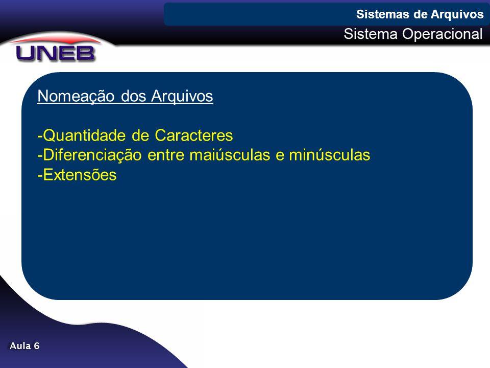 Nomeação dos Arquivos -Quantidade de Caracteres -Diferenciação entre maiúsculas e minúsculas -Extensões Sistemas de Arquivos