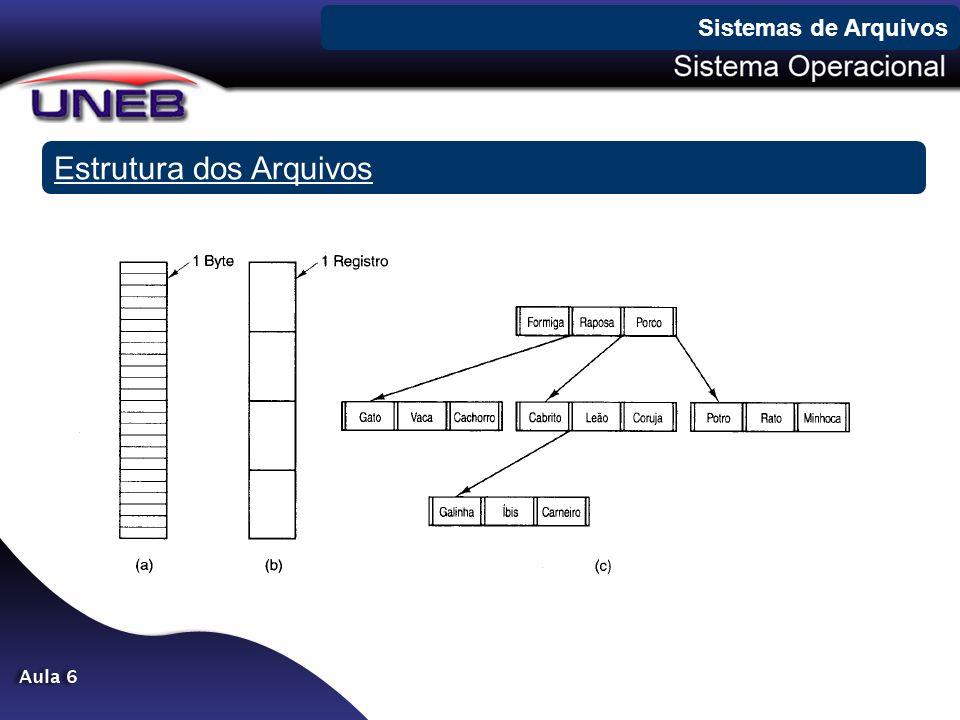 Estrutura dos Arquivos Sistemas de Arquivos