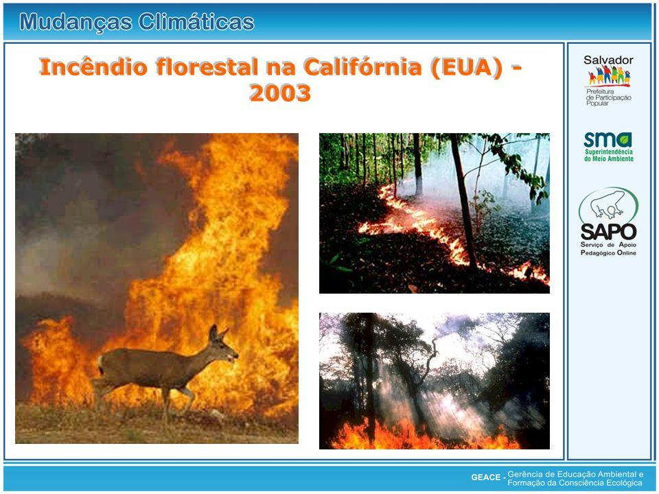 Incêndio florestal na Califórnia (EUA) - 2003 Incêndio florestal na Califórnia