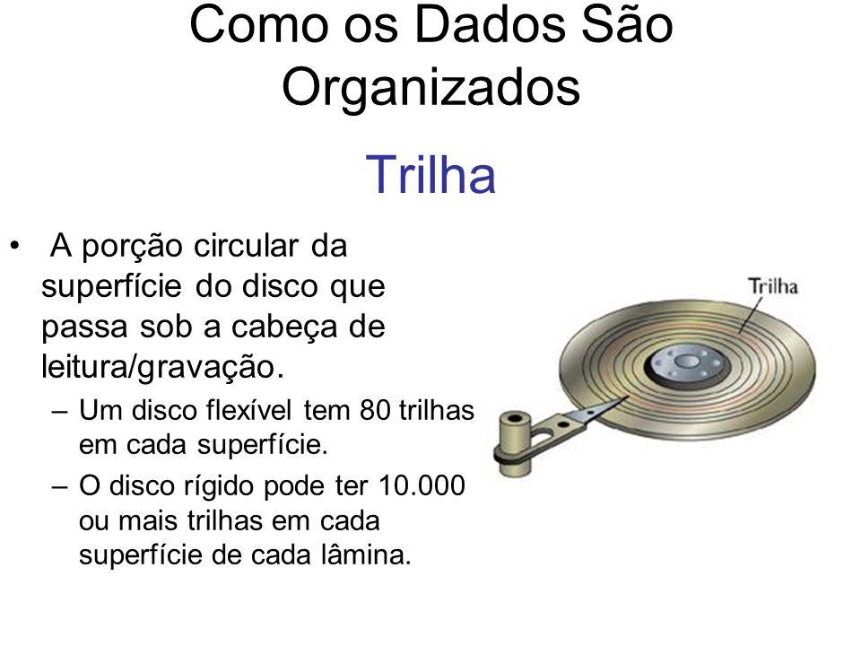 Trilha A porção circular da superfície do disco que passa sob a cabeça de leitura/gravação. –Um disco flexível tem 80 trilhas em cada superfície. –O d