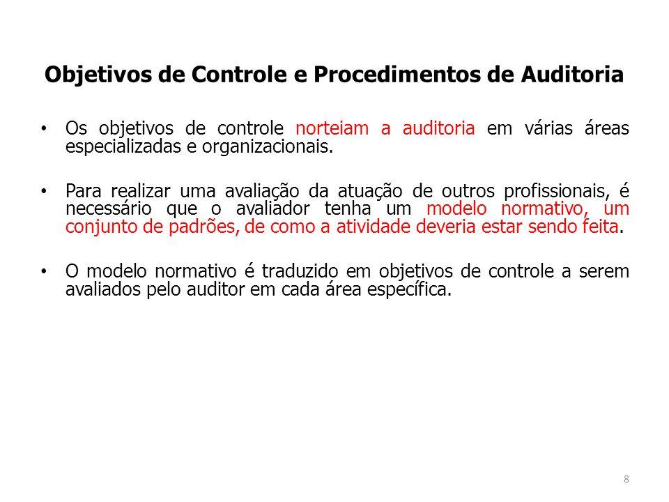 Os objetivos de controle norteiam a auditoria em várias áreas especializadas e organizacionais. Para realizar uma avaliação da atuação de outros profi