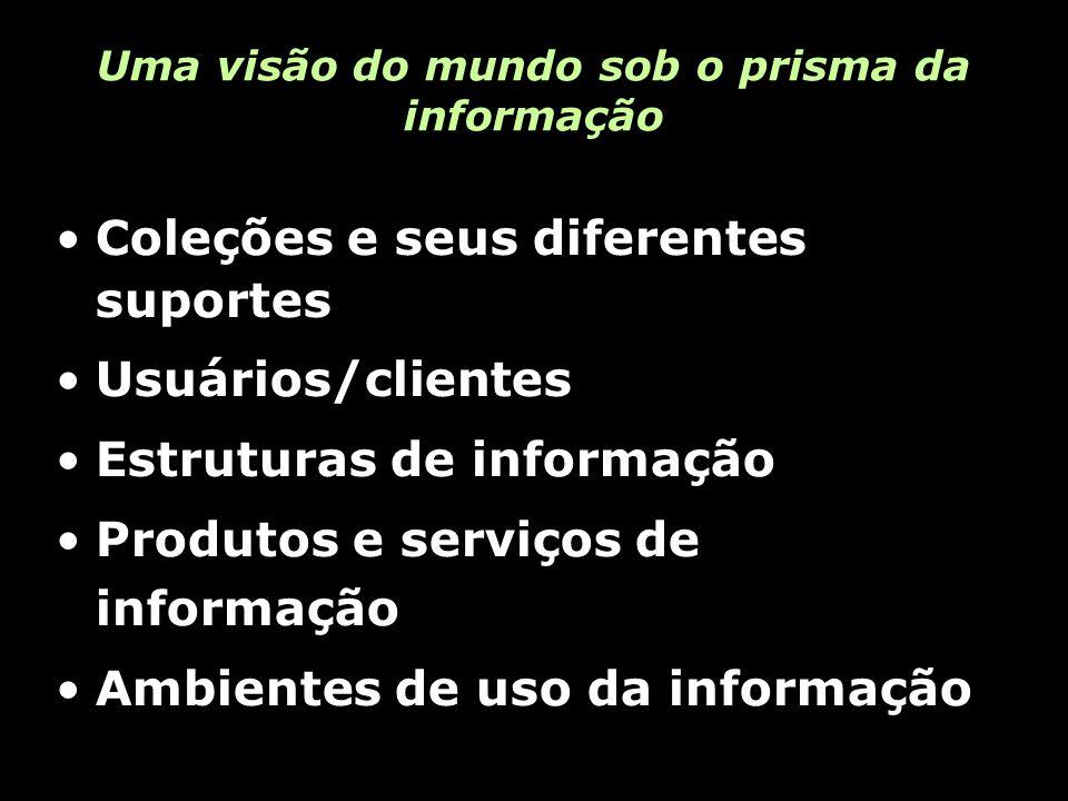 Uma visão do mundo sob o prisma da informação Coleções e seus diferentes suportes Usuários/clientes Estruturas de informação Produtos e serviços de informação Ambientes de uso da informação