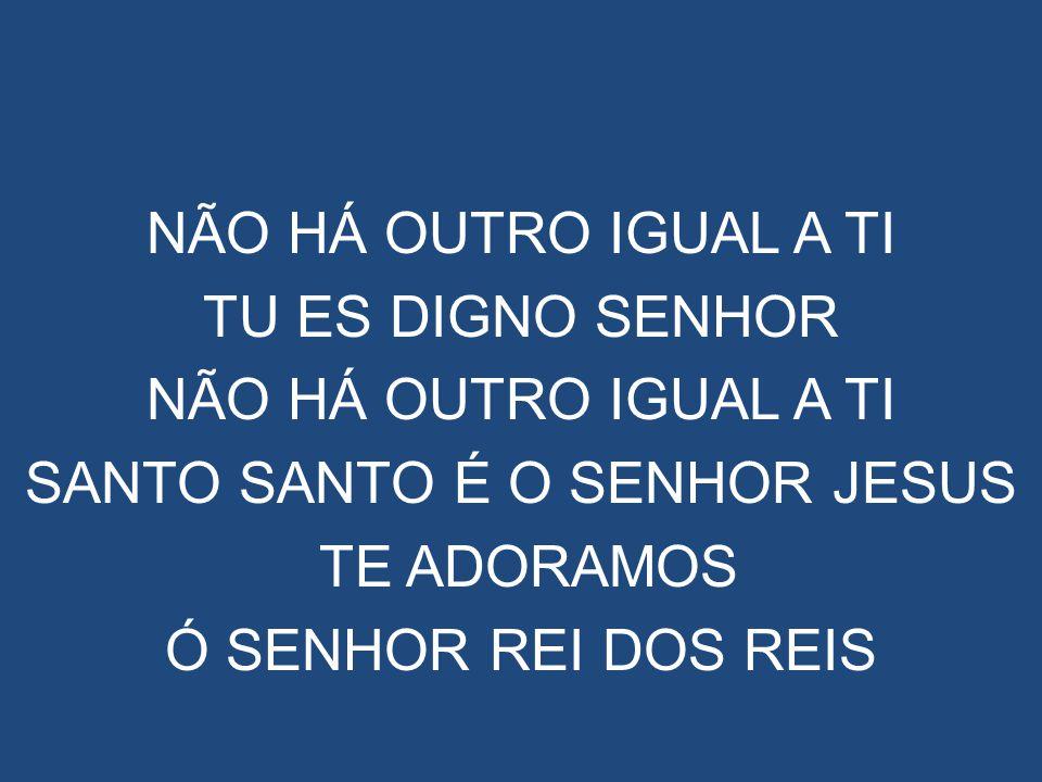 NÃO HÁ OUTRO IGUAL A TI TU ES DIGNO SENHOR NÃO HÁ OUTRO IGUAL A TI SANTO SANTO É O SENHOR JESUS TE ADORAMOS Ó SENHOR REI DOS REIS