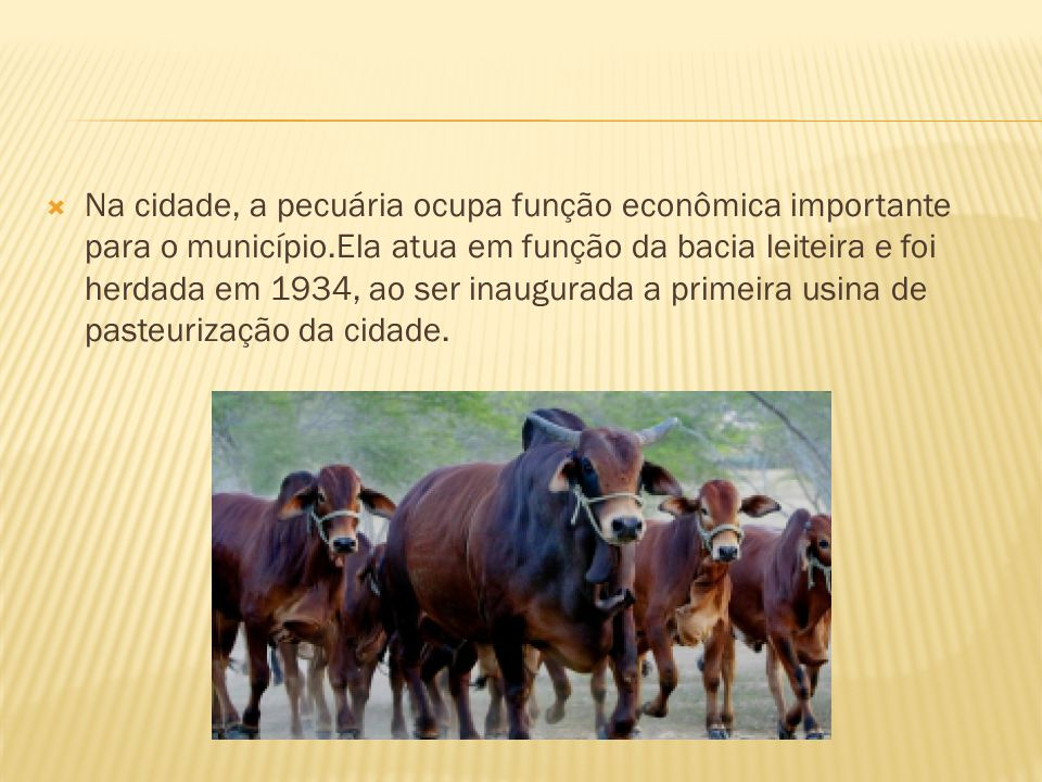 Na cidade, a pecuária ocupa função econômica importante para o município.Ela atua em função da bacia leiteira e foi herdada em 1934, ao ser inaugurada a primeira usina de pasteurização da cidade.