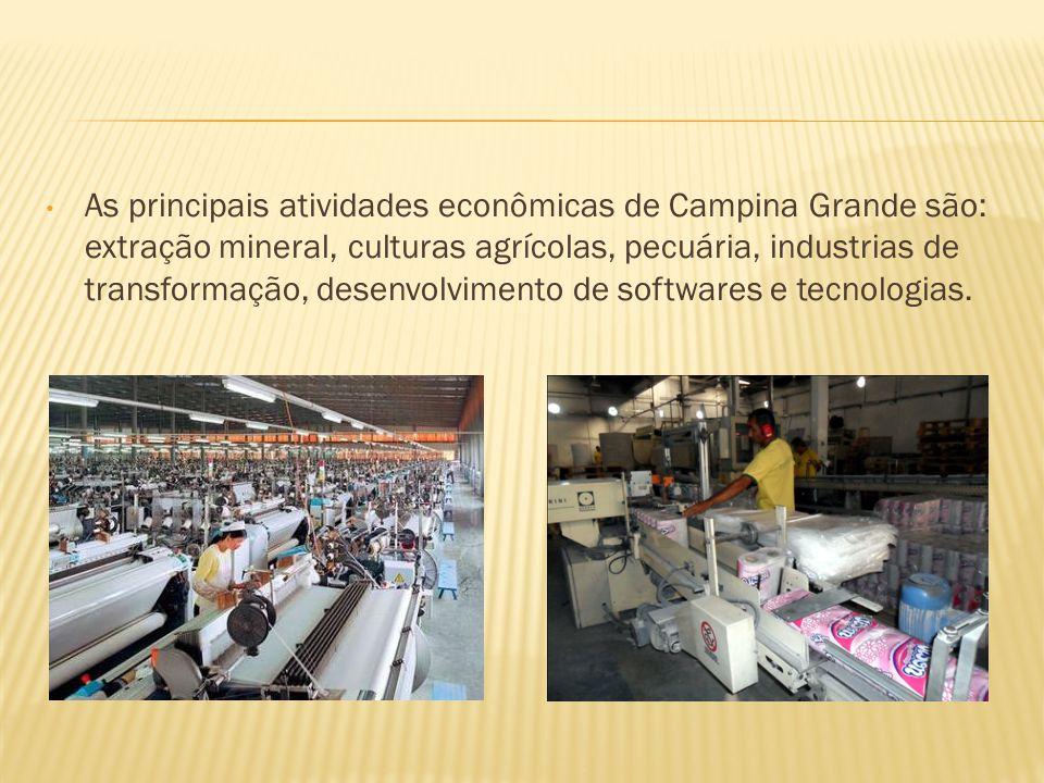 As principais atividades econômicas de Campina Grande são: extração mineral, culturas agrícolas, pecuária, industrias de transformação, desenvolvimento de softwares e tecnologias.