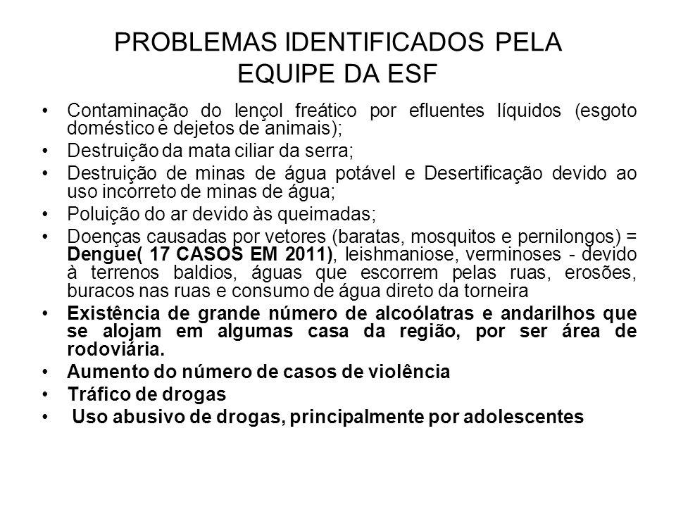 PROBLEMAS IDENTIFICADOS PELA EQUIPE DA ESF Contaminação do lençol freático por efluentes líquidos (esgoto doméstico e dejetos de animais); Destruição