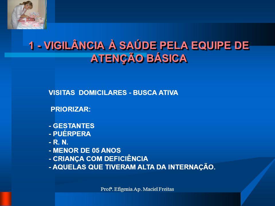 Profª. Efigenia Ap. Maciel Freitas 1 - VIGILÂNCIA À SAÚDE PELA EQUIPE DE ATENÇÃO BÁSICA VISITAS DOMICILARES - BUSCA ATIVA PRIORIZAR: - GESTANTES - PUÉ