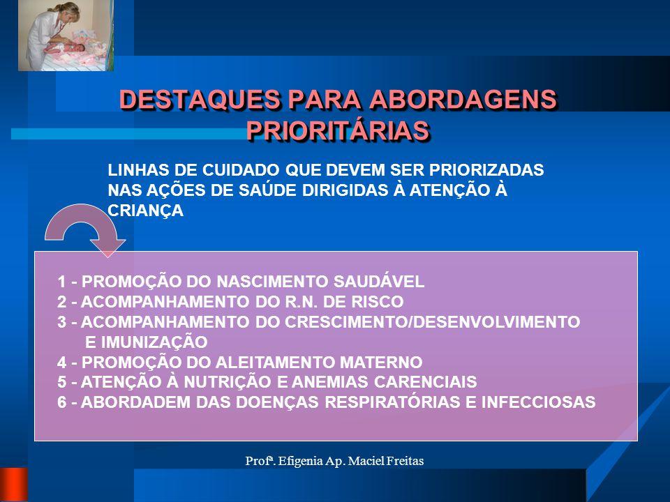Profª. Efigenia Ap. Maciel Freitas DESTAQUES PARA ABORDAGENS PRIORITÁRIAS LINHAS DE CUIDADO QUE DEVEM SER PRIORIZADAS NAS AÇÕES DE SAÚDE DIRIGIDAS À A